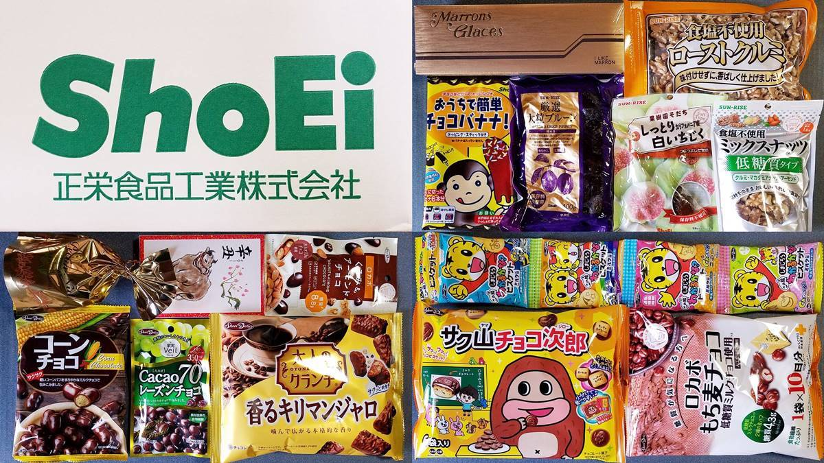 正栄食品工業(8079)の株主優待品 10月末権利の大量のお菓子